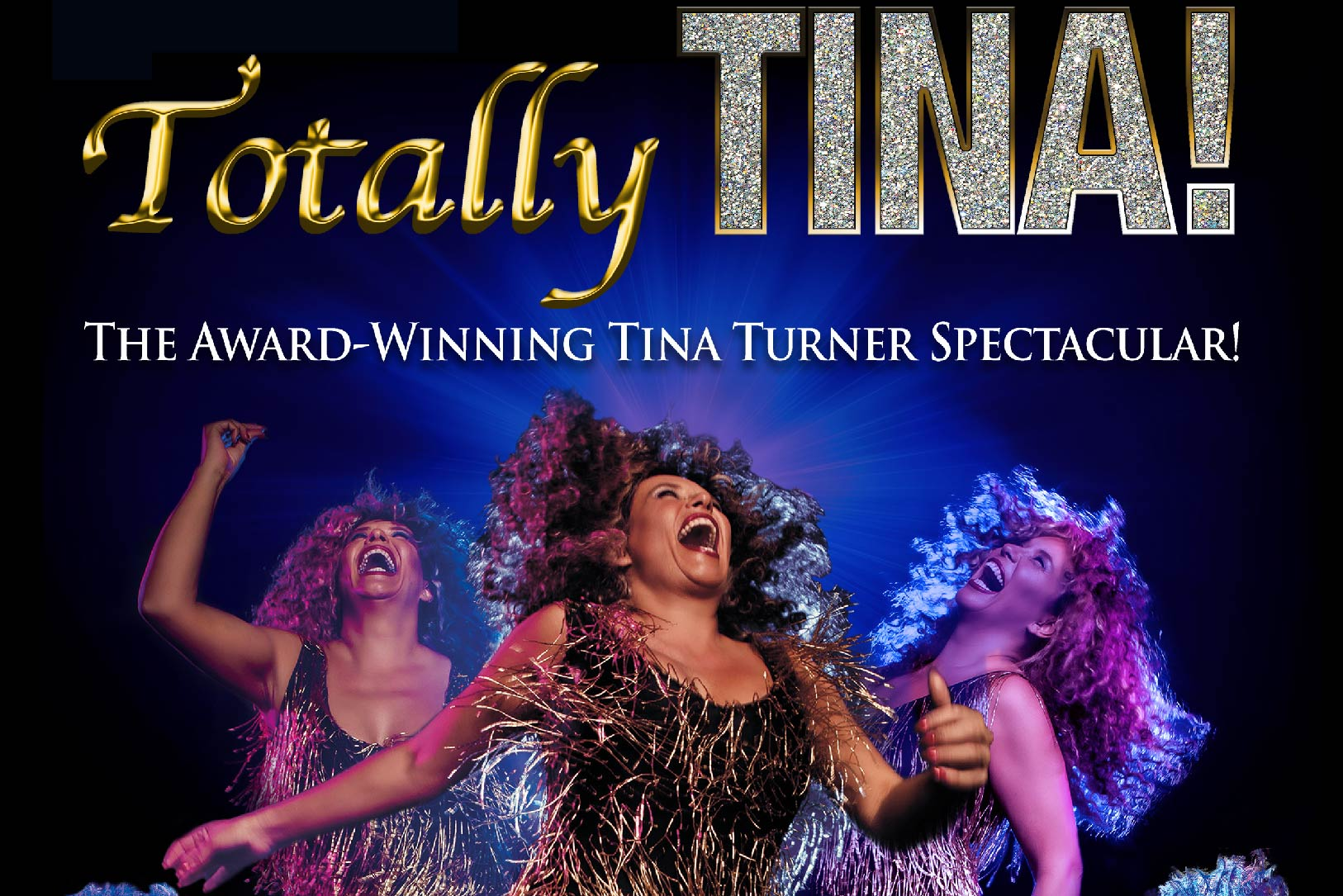 Totally Tina: The Best 30th Anniversary Tour